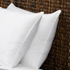 Le' Nautique Collection Feather Pillows (2-Pack)