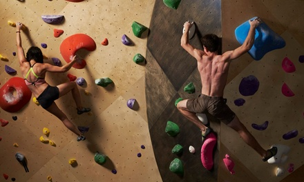 Indoor Rock Climbing at Brooklyn Boulders (39% Off). Four Options Available.