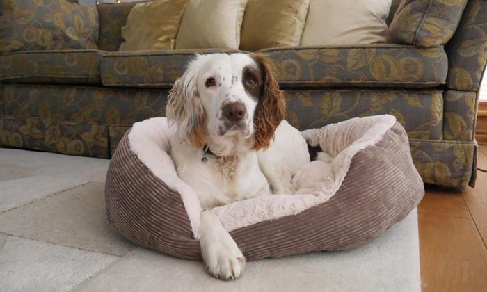 Cuccia da interno jumbo groupon - Cuccia per cani interno ...