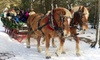 Adirondack Sleigh Rides - Lake Placid: Horse-Drawn Sleigh Ride for Two or Four at Adirondack Sleigh Rides (Up to 22% Off)