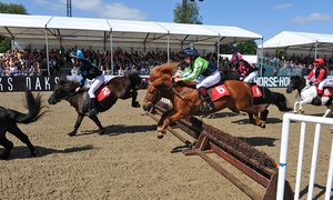 Royal Windsor Horse Show: The Royal Windsor Horse Show: One, Two or Four Tickets  12-13 May (Up to 61% Off)