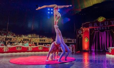 """Una entrada al """"Circo Raluy Legacy"""" del 20 de febrero al 1 de marzo en Villarreal (hasta 62% de descuento)"""