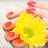 Up to 51% Off Shellac Manicures