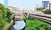 【PR】三越前集合/GW開催あり!神田川ジャングル探検クルーズ(ガイドの説明付き)