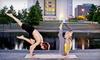 Up to 77% Off Classes at Maya Yoga