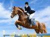 Elissa Grossman - Fenton: $20 Off $40 Worth of Horse Back Riding - Recreational