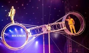 Cirque Maximum: 1 ou 4 places en gradin de face pour le spectacle du Cirque Maximum dès 10 €