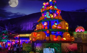 Up to 33% Off Admission to Pumpkin Festival