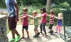 Lutheridge Camp and Conference Center - Limestone: $65 for Camp forOne Child Ages 4–7 atLutheridge Camp and Conference CenteronAugust1–5 ($144Value)