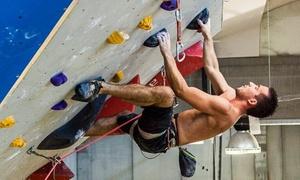 ASD VerTclimb: Corso di arrampicata Basic o Advance da ASD VerTclimb (sconto fino a 77%)