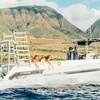 Up to 40% Off Whale Watching Tour