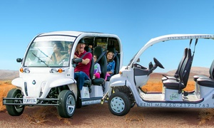 Via Green Cars: Driving Experience for Two Hours in an Eco-Friendly Vehicle for Four or Six from Via Green Cars (Up to 54% Off)