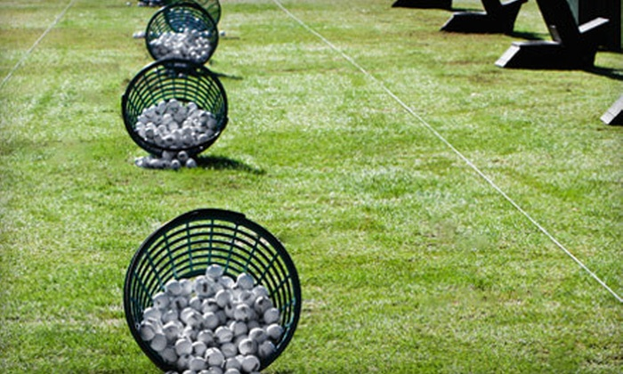 Champions Golf & Learning Center - Powdersville: 5 or 10 Medium Buckets of Range Balls at Champions Golf & Learning Center (Up to 55% Off)