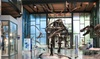 Up to 43% Off Admission to Witte Museum