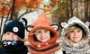 Groupon Goods Global GmbH: One, Two or Three Kids Animal Knitted Hat and ScarfSets