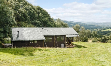 UK: 2- or 4-Night Glamping for Four with Option for Hot Tub at Choice of Feather Down