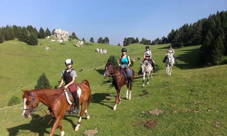 Paseo a caballo por el Berguedà para dos con opción a herradura de la suerte desde 24,95 € en Hípica Vilaformiu