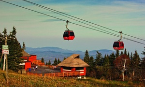 Mont Sainte-Anne: Round Trip in a Panoramic Gondola for an Adult or Family at Mont Ste-Anne (43% Off)
