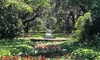 Up to 47% Off Admission at Brookgreen Gardens