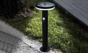 Borne solaire détecteur mouvement