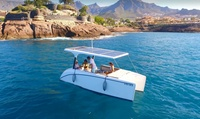 Paseo en barco con capitán y barra libre de champán en Tenerife hasta 9 personas por 59,95 € con Green Power Boats
