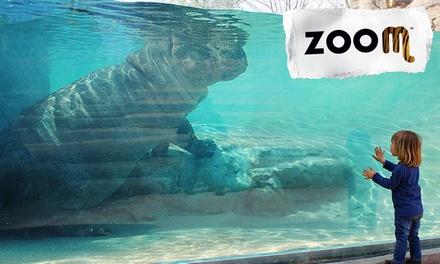 Zoom: ingresso solo allo zoo o ingresso combinato allo zoo più aree acquatiche