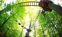 3 Stunden Hochseilgarten inkl. 13-Meter-Sprung für 1 oder 2 Personen im Kletterwald Freudenberg (bis zu 39% sparen*)