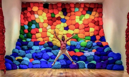 Admission for One or Two or Family Admission Package to The Bass Museum of Art (Up to 57% Off)