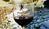 Up to 48% Off Wine Tasting and More at Granite Lion Cellars