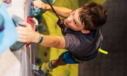 $55 for Five Rock Climbing Day Passes at Rocksports Up to $110 Value
