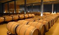Visita guiada a bodega con degustación de vino propio y tapeo para 2 o 4 desde 12,90 € enBodegas Prinur