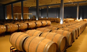 Bodegas Prinur: Visita guiada a bodega con degustación de vino propio y tapeo para 2 o 4 desde 12,90 € enBodegas Prinur