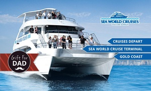 Sea World Whale Watch: 2.5-Hour Whale Watching Tour for $59 with Sea World Whale Watch, Gold Coast (Up to $99 Value)