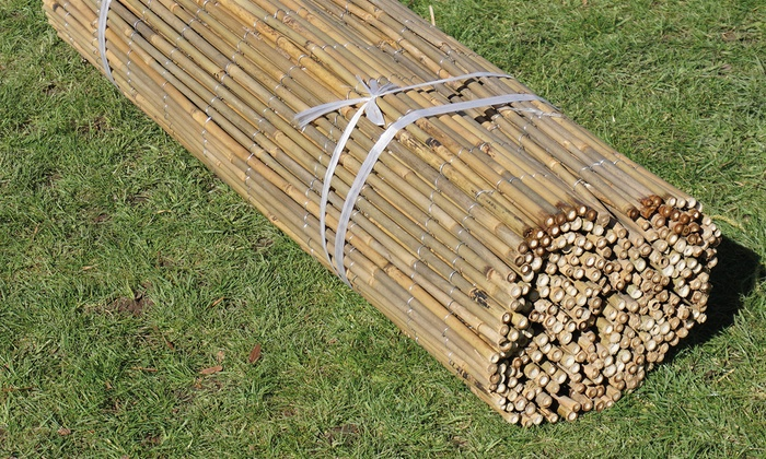 Bamboo Cane Screen Roll | Groupon Goods