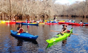 Palmetto Paddle Sports: Kayak or Paddleboard Tour from Palmetto Paddle Sports (Up to 50% Off). Three Options Available.