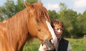 """Pferdehof Moisburg: Workshop """"Begegnung mit den Pferden"""" für 1 oder 2 Personen im Pferdehof Moisburg (bis zu 77% sparen*)"""