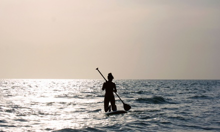 Standup-Paddleboard Rental or Lesson for One, Two, or Four at Malibu Paddle Surf in Santa Monica (Up to 65% Off)
