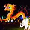 Lantern Light Festival — Up to 30% Off