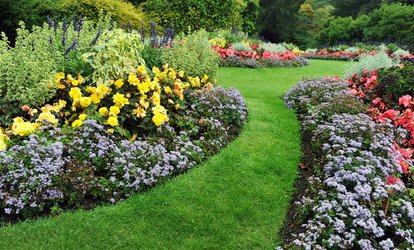 image for Landscaping Including Edging, Weeding, and Installation of Mulch by Piraino's Landscaping (Up to 51% Off)