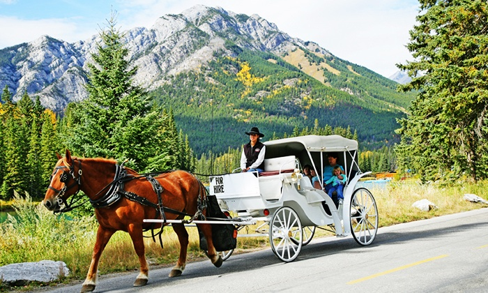 Holiday on Horseback - Warner Stables: Carriage Rides Through Downtown, Bow River, or Banff Springs from Holiday on Horseback (Up to 37% Off)