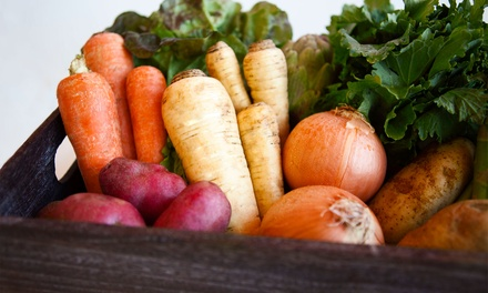 $23.99 for One Week of Seasonal Organic-Produce Delivery from Freggies ($39.99 Value)
