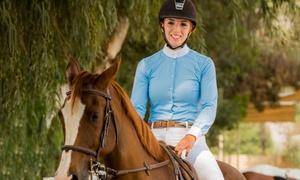 Al Jumooh Equestrian Club: Two, Five or Ten 45-Minute Horse Riding Classes with Al Jumooh Equestrian Club