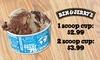 Ben & Jerry's Ice Cream Scoop