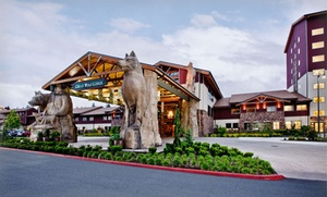 1-night Stay For Up To Six Or Seven With Water Park Passes And $25 Credit At Great Wolf Lodge Charlotte/concord