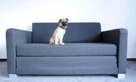 Limpieza de tapicería de sofáde 2, 3 o 4 plazas desde 34,90 € y con chaise longe desde 44,90 €