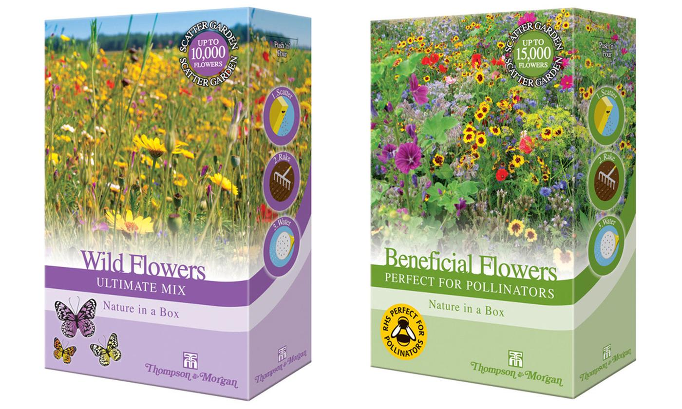 Wild Flower, Perfect for Pollinators or Easy and Fragrant Annuals Shake and Sow Scatter Seed Packs