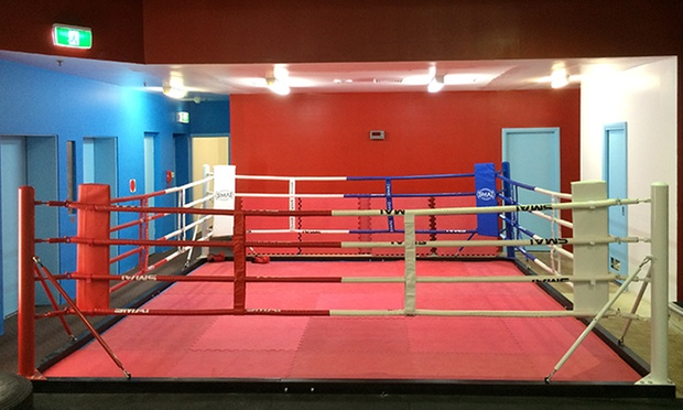 hiyah unlimited fight classes platinum fight and fitness centre groupon. Black Bedroom Furniture Sets. Home Design Ideas