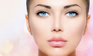 Schönheitssalon N Vi: Permanent Make-up für 1 Zone nach Wahl inkl. Nachbehandlung im Schönheitssalon N Vi (bis zu 80% sparen*)