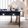 Paw Print Raised Pet Feeder