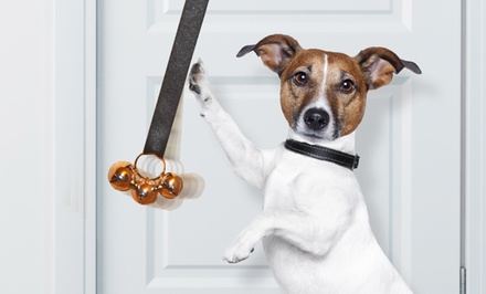 groupon daily deal - Potty Chimes Dog Potty-Training Chimes and DVD. Free Returns.